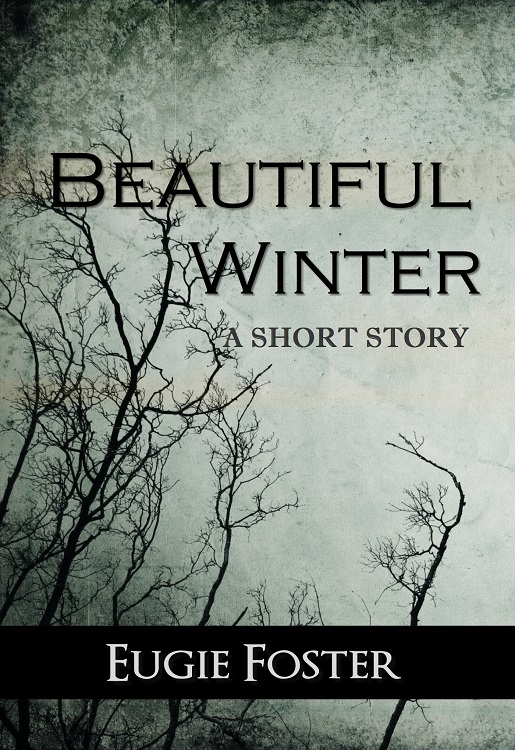 Beautiful Winter ebook ebook cover