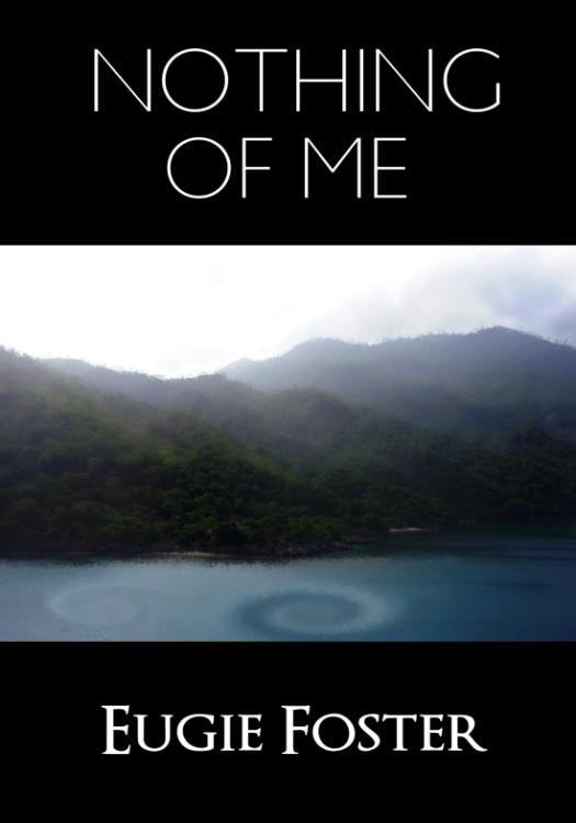 Nothing of Me ebook ebook cover
